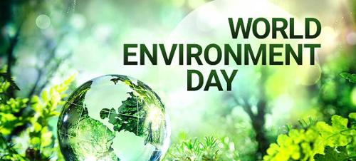 Image of under the sea with a glass globe at the bottom shining with the text World Environment Day