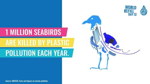 white background with cartoon image of bird with plastic inside and the words 1 million seas birds are killed by plastic each year